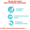 Royal Canin Wet Urinary Care