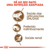 Royal Canin Wet Ageing +12