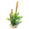 Planta Bamboo Forest Plants